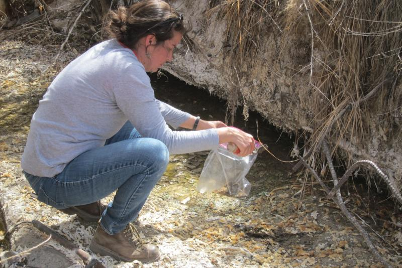 Dr. Paloma Beamer takes a sediment sample near Shiprock, NM.