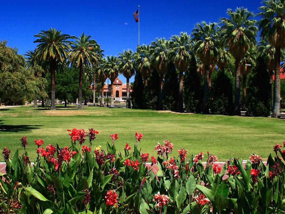 What Makes The University Of Arizona The Greatest School