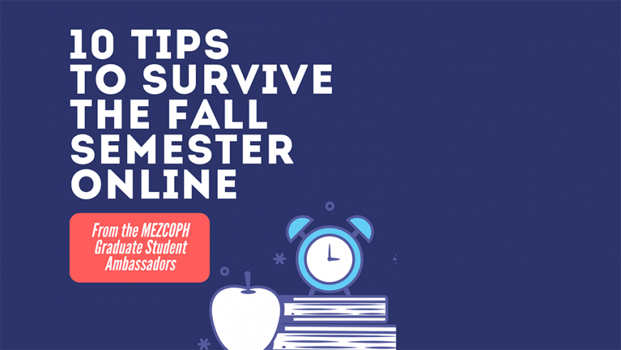 10 Tips to Survive the Fall Semester Online
